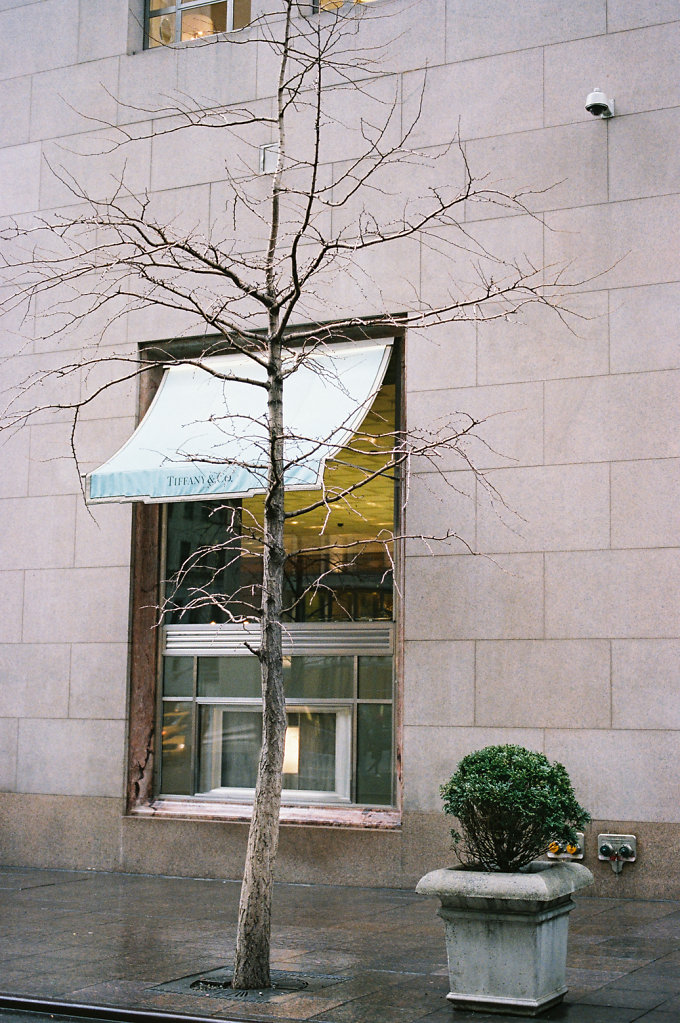 Locations series Breakfast At Tiffany's (Holly Golightly window shopping) Tiffany & Co N.Y.C. 2014