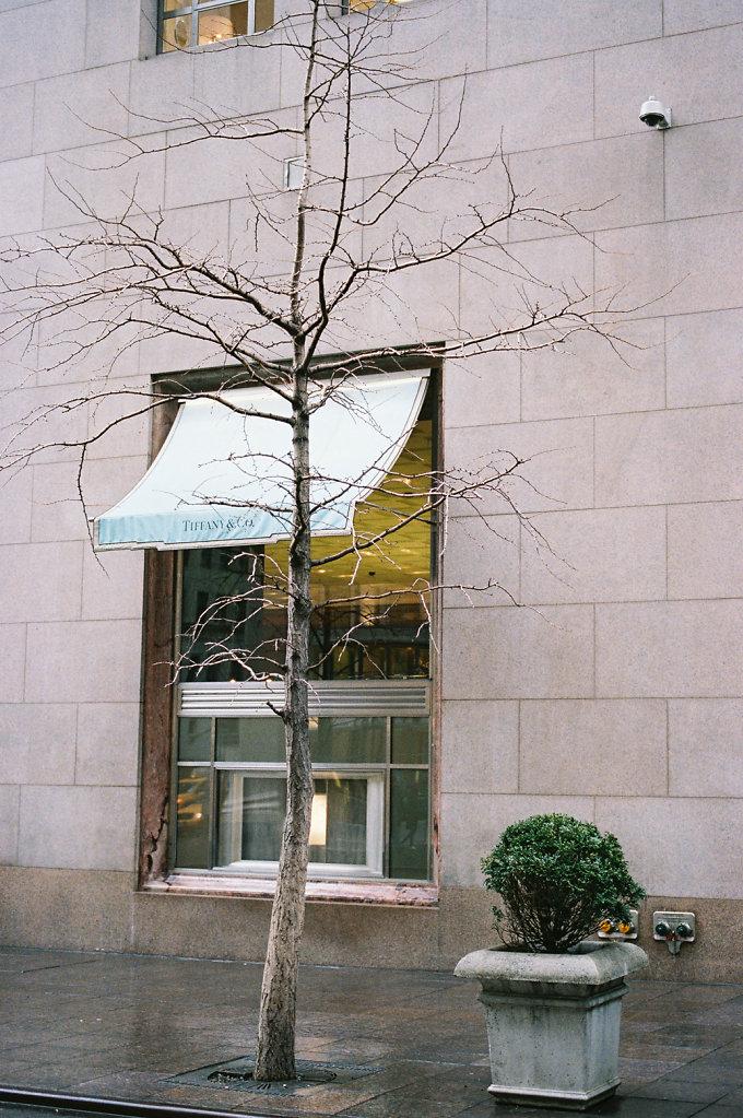 Locations series Breakfast At Tiffany's (Holly Golightly window shopping) Tiffany & Co N.Y.C. 2014